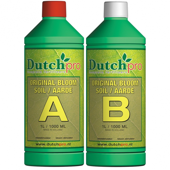 Dutch Pro Original Bloom...