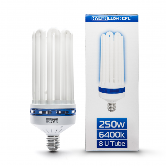 Compact Fluorescent Lamps...